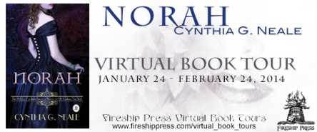 Norah book tour