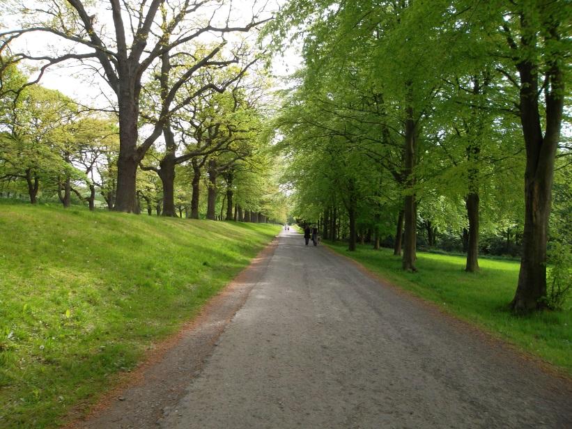 Gibside avenue 2